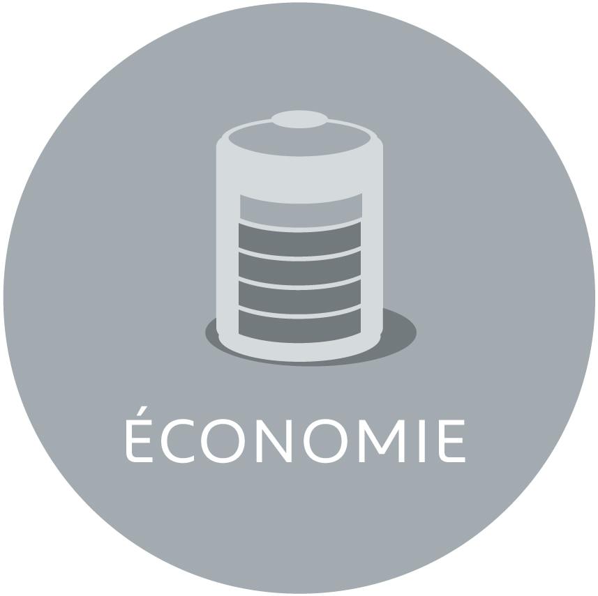 pro-picto-economie