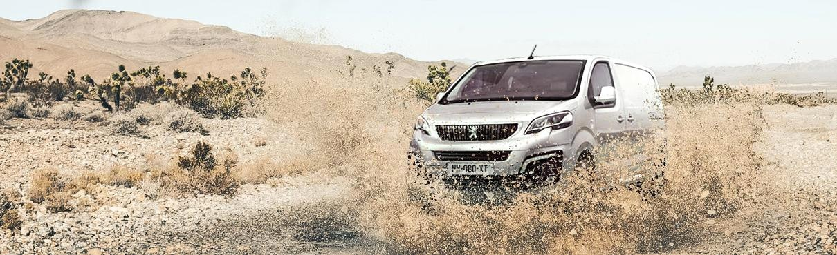 Peugeot 4X4
