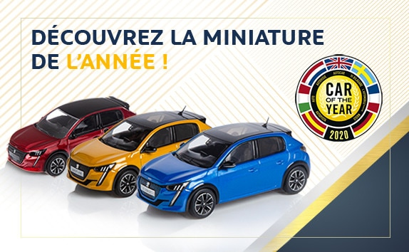 MINIATURE DE L'ANNEE