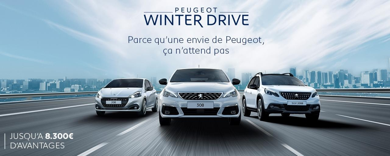 Peugeot Winterdrive